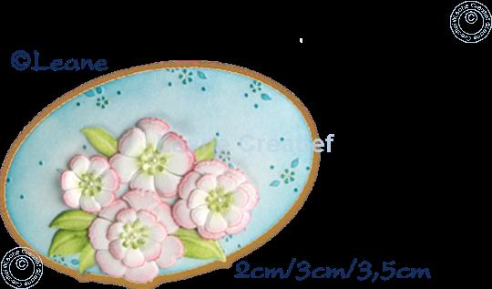 Bild von Multi die Blossom
